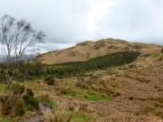 Looking towards Hooker Crag - Muncaster Fell