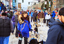 Iditarod2015_0252.JPG