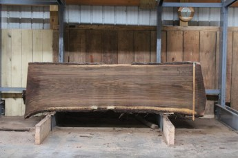 "581  Walnut -3 10/4 x 31"" x  27"" Wide x  8'  Long"