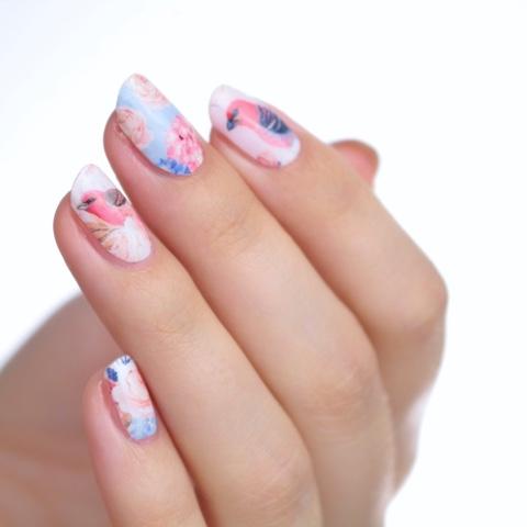 thumbsup nails nailwraps rose finch