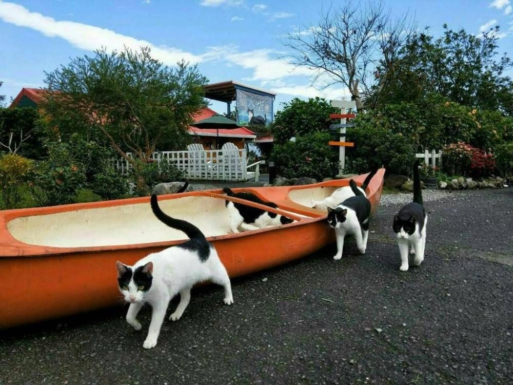 貓天空&兔兔窩渡假民宿