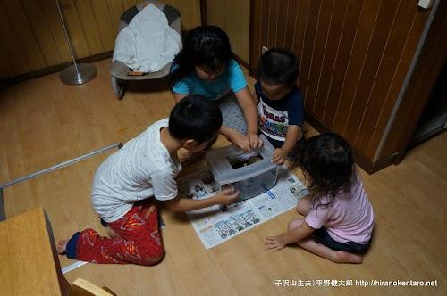 カブトムシに興奮する子供たち
