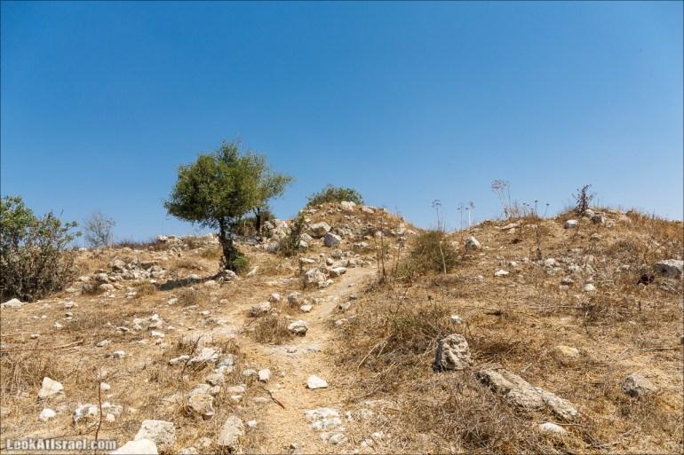 Парк Канада - пеший и бездорожный, неизвестный и интересный | LookAtIsrael.com - Фото путешествия по Израилю