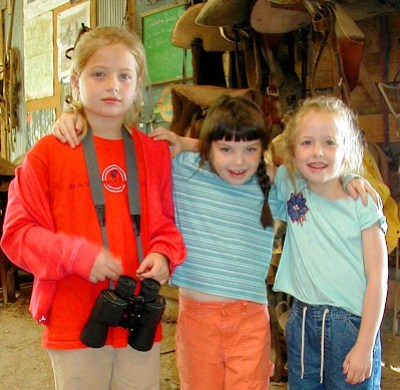 3 pals explore the barn
