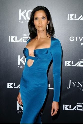 Padma Lakshmi Measurement