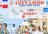 Iditarod2015_0176.JPG