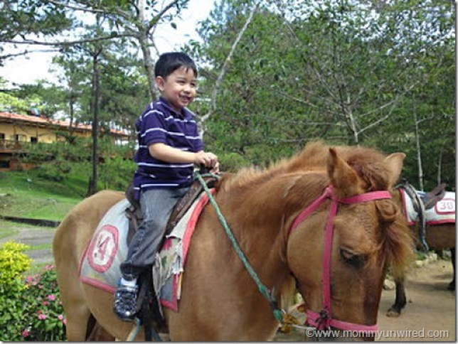 Adrian horseriding