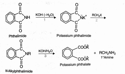 Preparation of amines, gabriel phthalimide reaction
