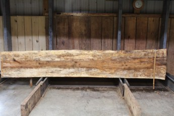 """611 Maple Spalted - 4 10/4x 27"""" x 23"""" Wide x  12'  Long"""