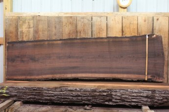 "464 Walnut -5 2 1/2"" x 30"" x 29"" Wide x 10' Long"