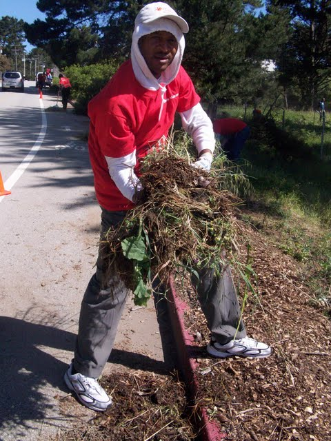 IVLP 2010 - Volunteer Work at Presidio Trust - 100_1415.JPG