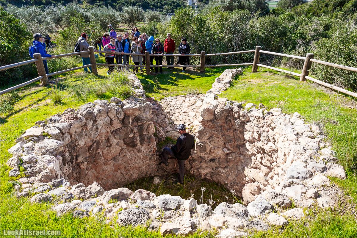 Туристические тропы Рамат ха-Надив   Hiking around Ramat ha-Nadiv   LookAtIsrael.com - Фото путешествия по Израилю