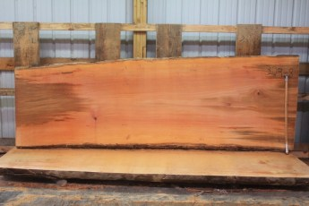 Sycamore 329-8  Length 11', Max Width (inches) 43 Min Width (inches) 36 Thickness 10/4  Notes : Kiln Dried