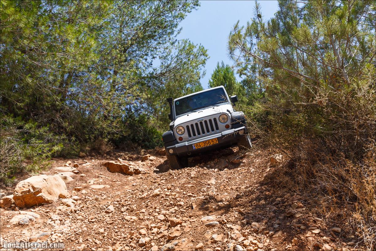Внедорожное путешествие вдоль ручья Кисалон и Сорек | LookAtIsrael.com - Фото путешествия по Израилю