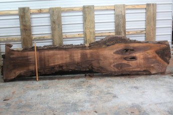 Walnut 216-1  Length 12' Max Width (inches) 28 Min Width (inches) 8 Notes 8/4 Kiln Dried
