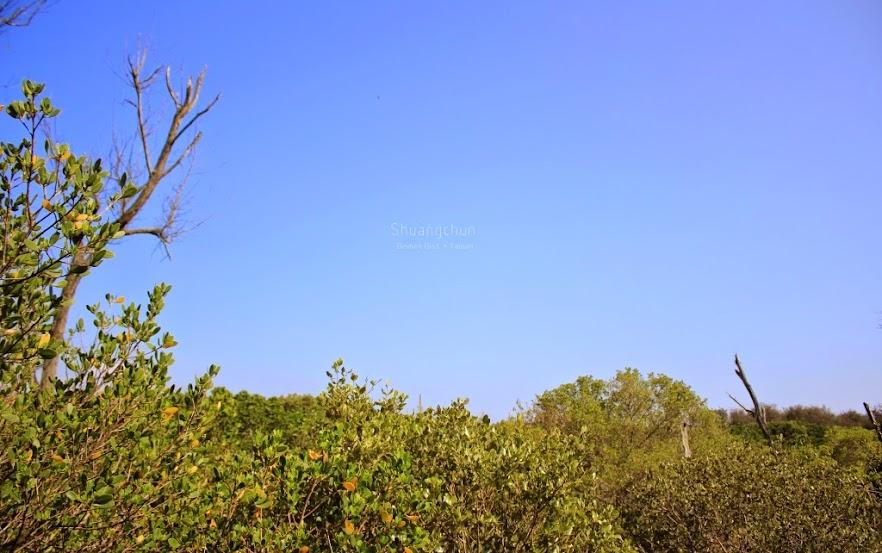 台南北門景點,雙春濱海遊憩區-8
