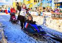 Iditarod2015_0365.JPG