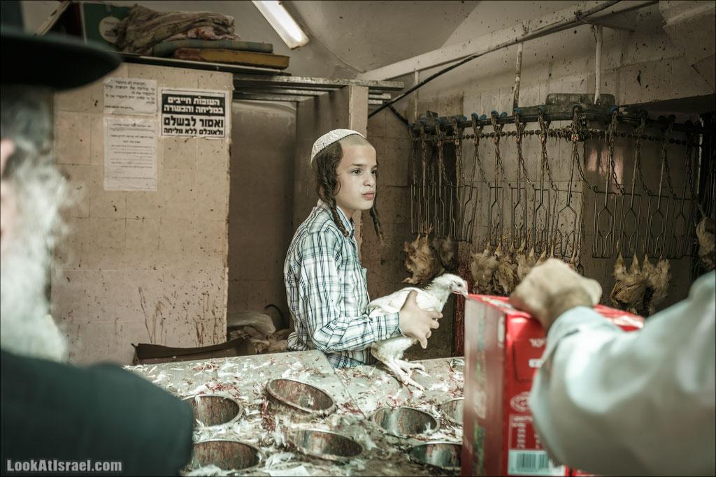 Обряд Капарот в Меа Шаарим, Иерусалим | Kaparot in Mae Shearim, Jerusalem | כפרות במאה שערים, ירושלים | LookAtIsrael.com - Фото путешествия по Израилю
