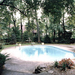 images-Pool Environments and Pool Houses-Pools_8.jpg
