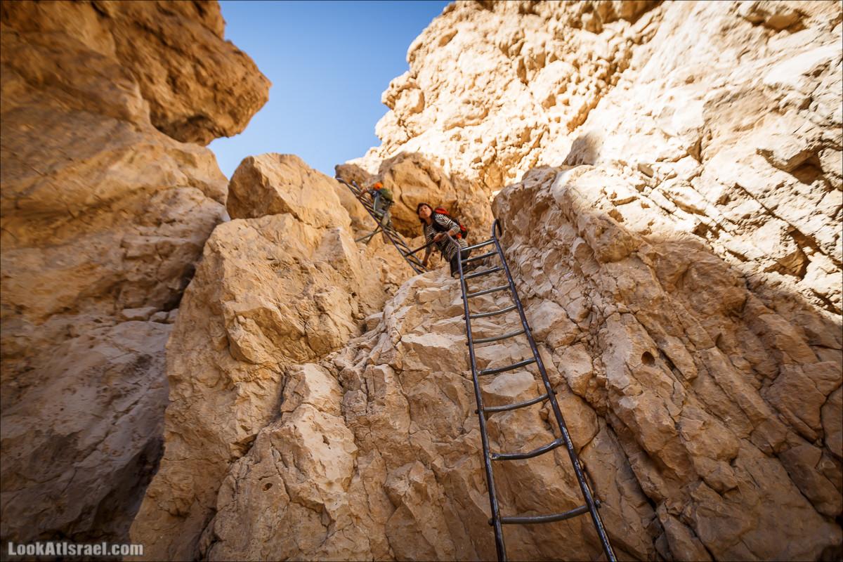 Вертикальный каньон Тамар