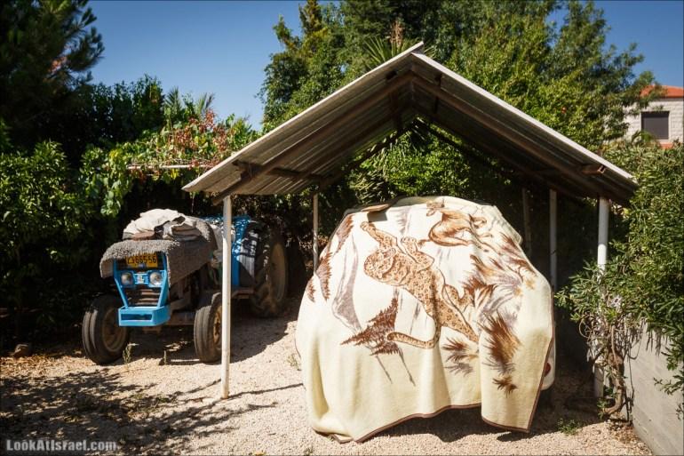 Пещера Альма и черкесская деревня Рейхания | LookAtIsrael.com - Фото путешествия по Израилю