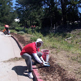 IVLP 2010 - Volunteer Work at Presidio Trust - 100_1426.JPG