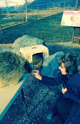 susan and porcupine.jpg