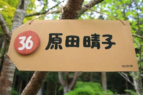 _RD20116.JPG