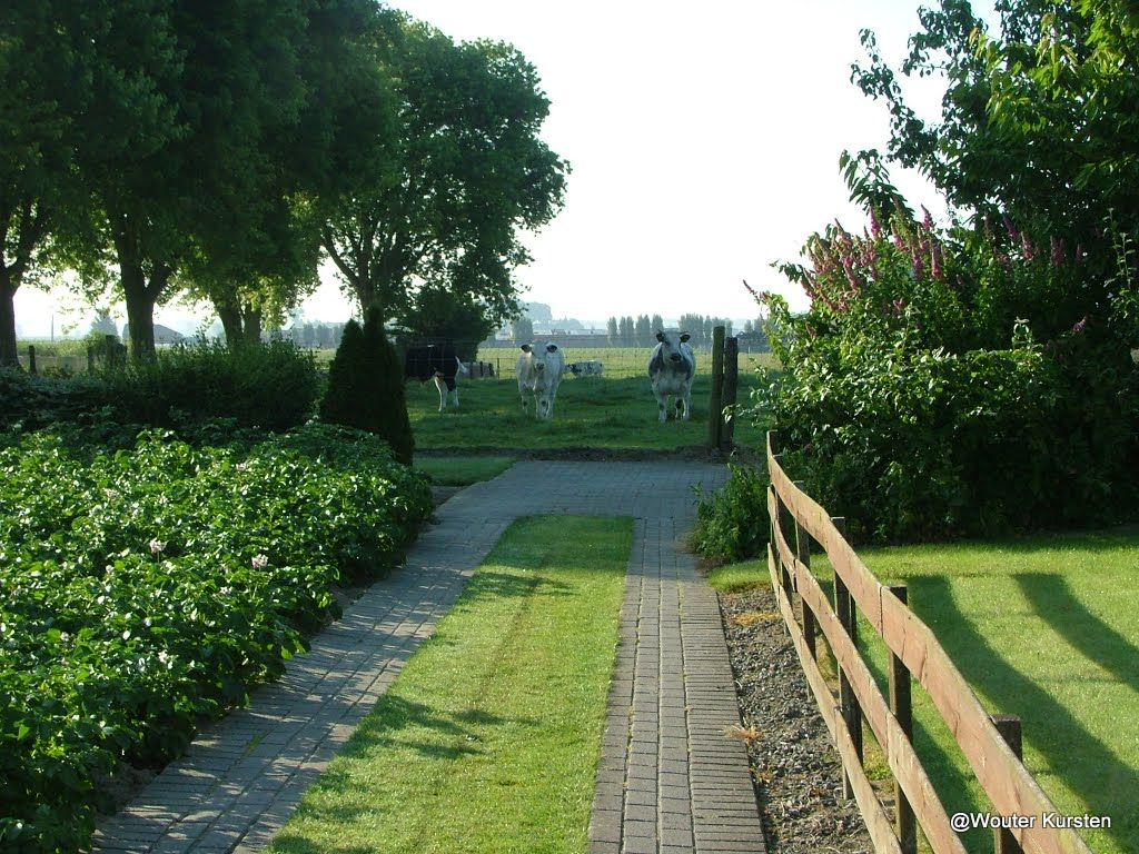 Westhoek 22 en 23 juni 2009 - DSCF8616.JPG