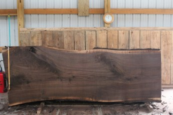 "508 Walnut -5 12/4  x  49"" x  41"" Wide x 10' Long"