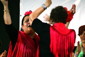 DistritoSur_2008MayoBaja118.jpg