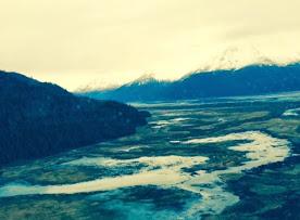 tundra 11.jpg