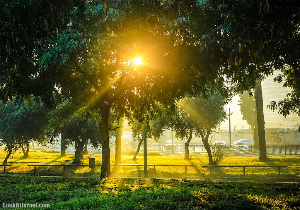Восход в Рамат Ган | Sunrise in Ramat Gan | זריחה ברמת גן