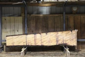 "600  Ambrosia Maple - 12 8/4x 27"" x 17"" Wide x  10'  Long"