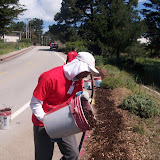 IVLP 2010 - Volunteer Work at Presidio Trust - 100_1421.JPG