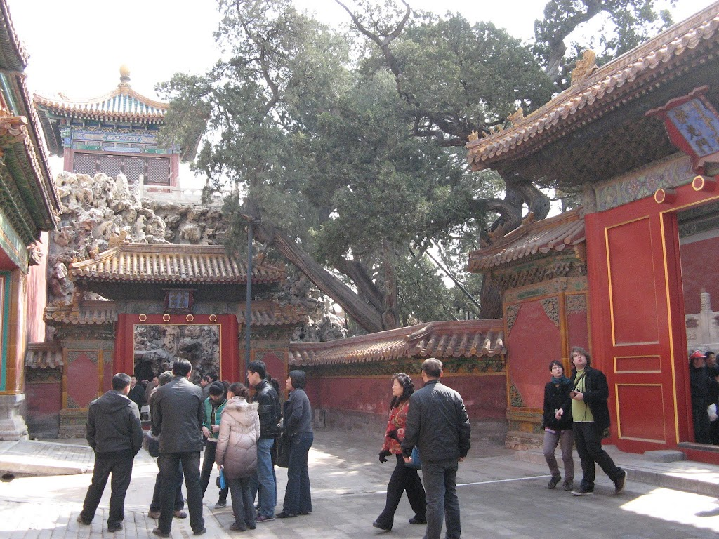2500The Forbidden Palace