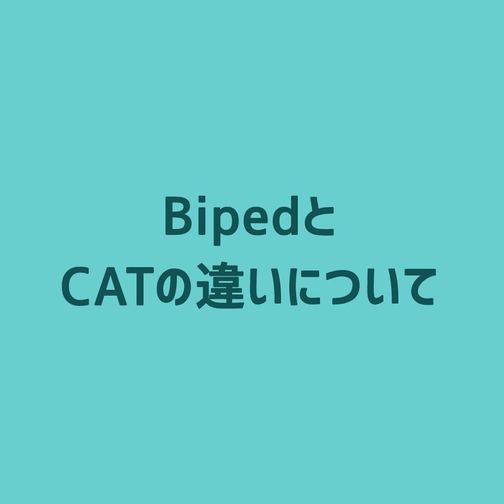 3ds-max-diff-biped-cat