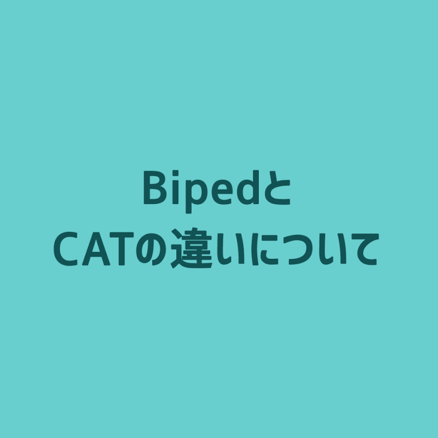 3ds-max-diff-biped-cat