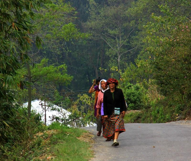 #Kalimpongtravel #Travelbloggerindia #Travelblog #westbengaltravelblog #westbengaltourism