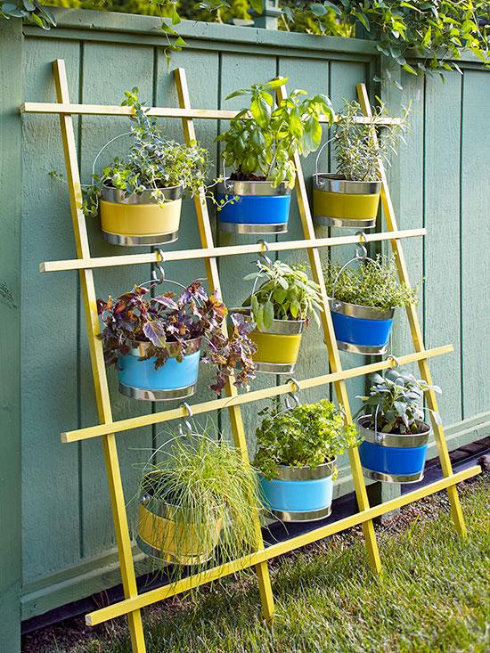 Hacer un jardín vertical.