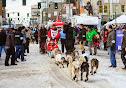 Iditarod2015_0416.JPG