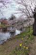 IMG_20140503_070659760_HDR.jpg