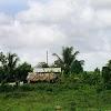 landscape005.jpg