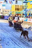 Iditarod2015_0346.JPG
