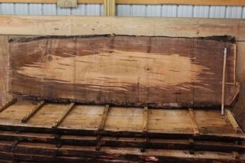 "388 Ambrosia Maple - 2 2 1/2"" x 36"" x 28"" Wide x 10' Long"