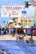 Iditarod2015_0359.JPG