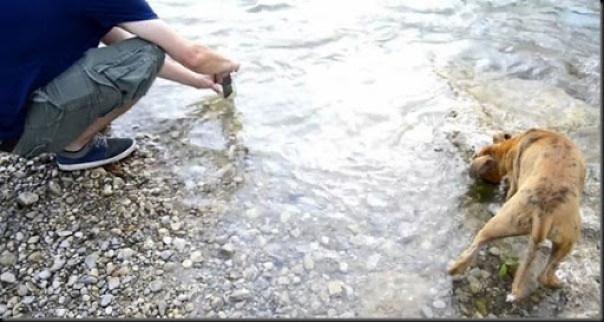 teknik fotography di dalam air