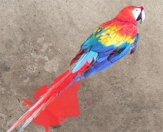 Pintura inicial das manchas de tinta