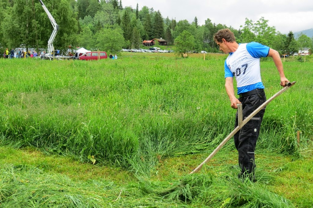 Kosidba u Norveskoj- Turisticka organizacija opštine Ljig234