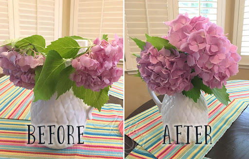 How To Save Drooping Hydrangeas After Cutting The Kim Six Fix